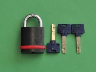 15313:MUL-T-LOCK マルティロック NE10L