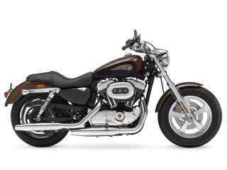 2013年 XL1200C Custom 110th Anniversary Edition・カラーチェンジ