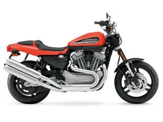 Sportster XR1200