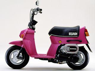 1981年 SQUASH Standard・新登場