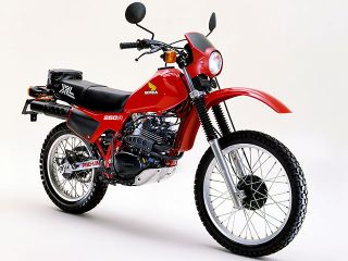 1981年 XL250R・新登場