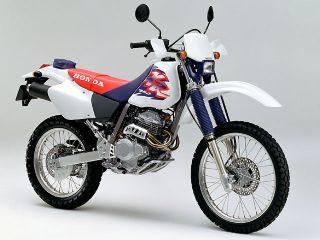1995年 XR250・新登場