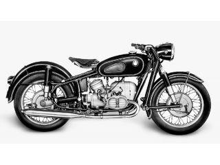 1955年 R50・新登場