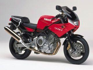 1995年 TRX850・新登場