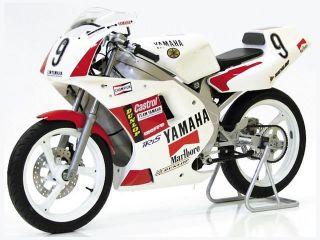 1990年 TZ50