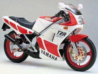 1985年 TZR250・新登場