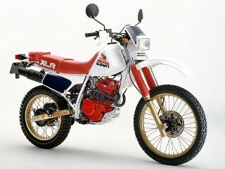 1985年 XLR250R・新登場