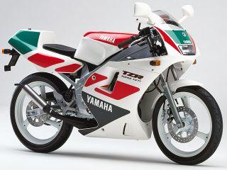 1991年 TZR50・カラーチェンジ