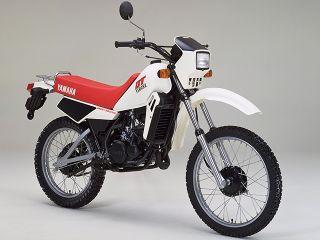 1982年 DT50・新登場